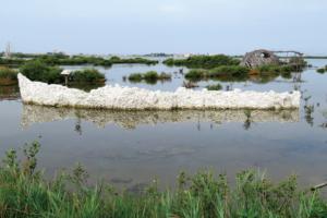 成龍貝殻の舟、渚を編む Chenlong Ship of Shells – Weaving between Tides